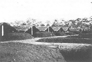Organic matter composts in long mounds, some covered under thatch-roofed sheds at a tea estate in Dooars, India circa 1938. Image credit: J. C. Watson in An Agricultural Testament (1943).
