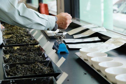 tea being sorted and graded by expert