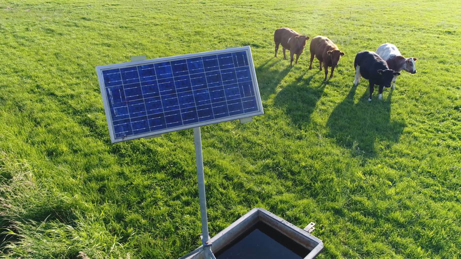 Solar powered pumps are perfect for cattle ranching